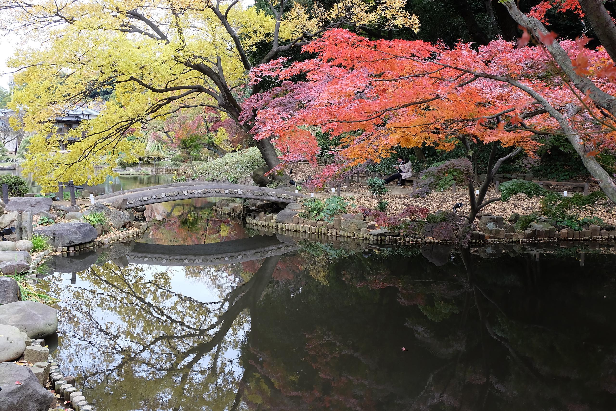shin-edogawa-park_7