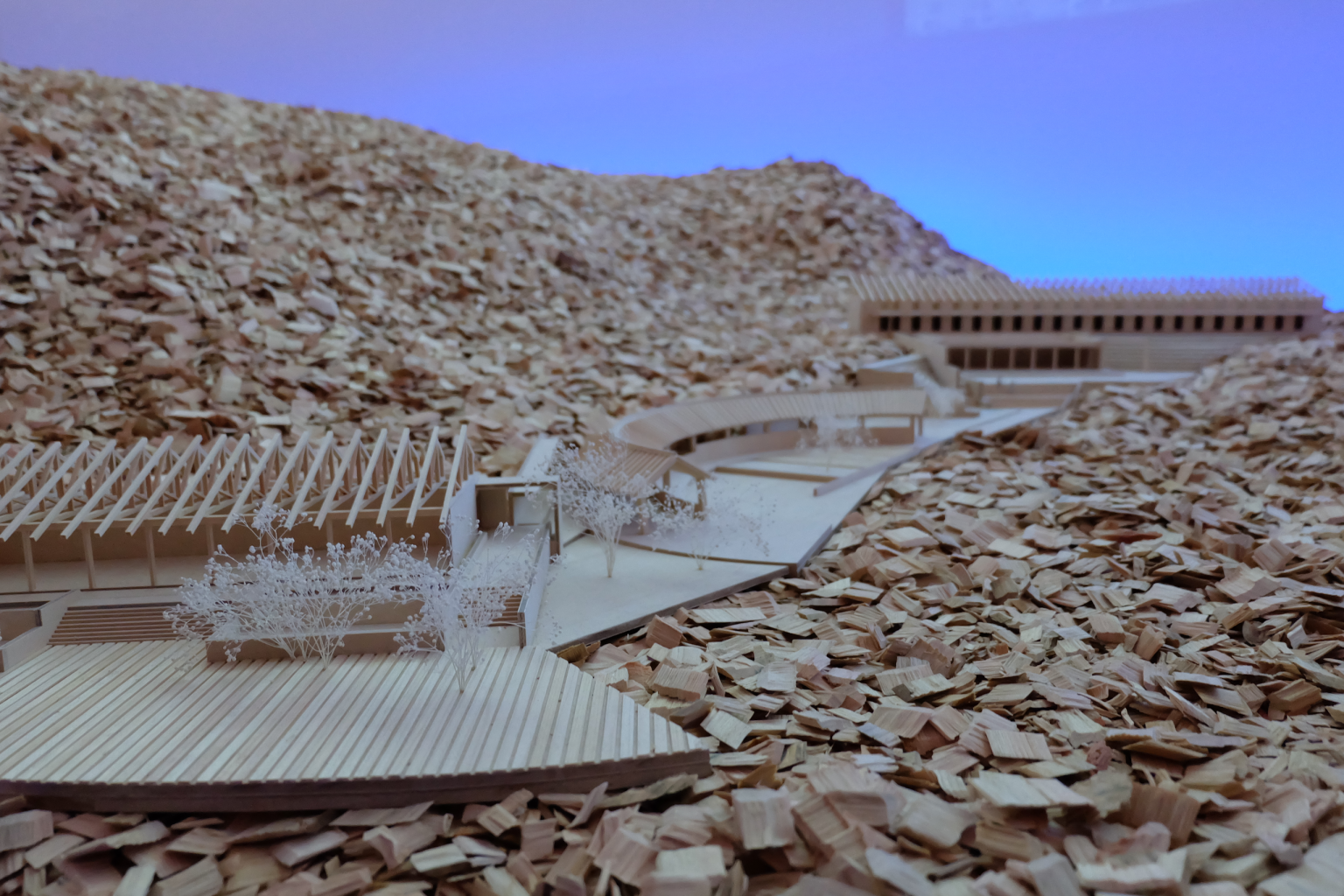 Tadao Ando Endevors