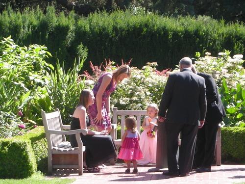 Wedding Party In Rose Garden